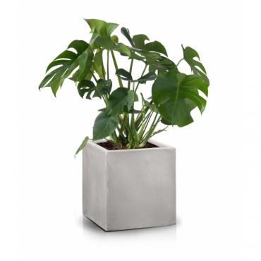Eco sześcian, szary 50x50cm